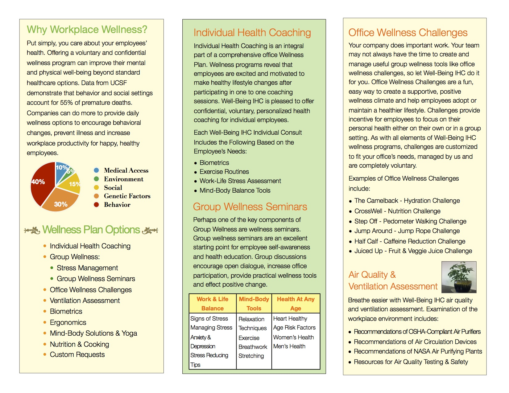 Wellness Brochure Veda Health